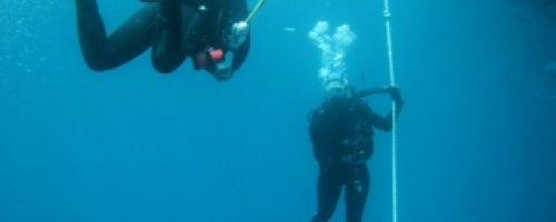 Esports escolars RUB - Submarinisme a una meravellosa reserva natural a Europa